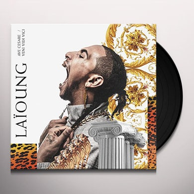 Dani Stevenson / Missy Elliott HONK YOUR HORN (4 MIXES) Vinyl Record