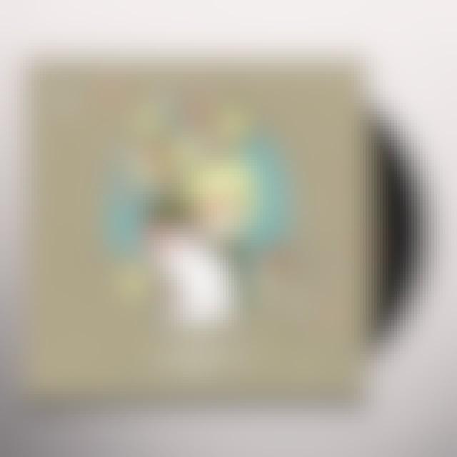 Nightjars Vinyl Record