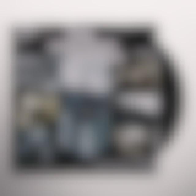 The Gaslight Anthem AMERICAN SLANG Vinyl Record