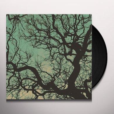 Follakzoid Vinyl Record