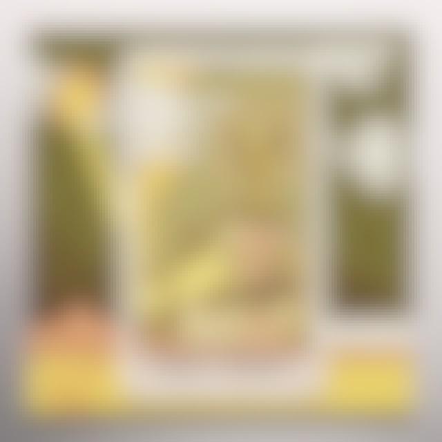 Matt Duncan SOFT TIMES Vinyl Record