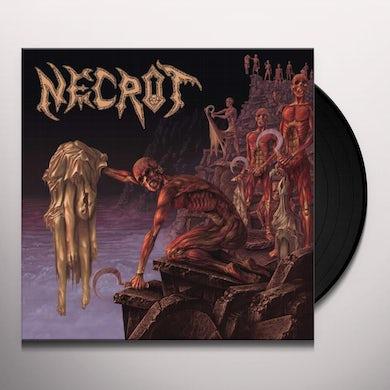 Mortal Vinyl Record
