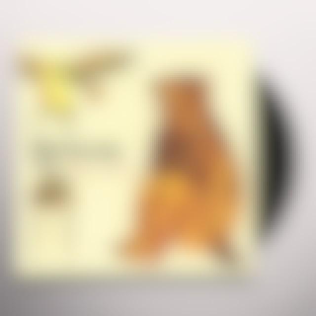 The Spinto Band VIVIAN DON'T Vinyl Record