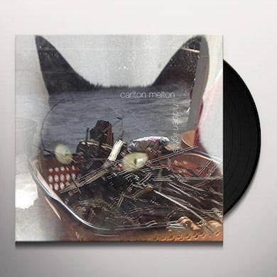 HIDDEN LIGHTS Vinyl Record