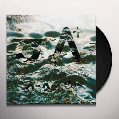 NIPIY Vinyl Record
