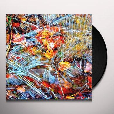 SCHNUPS Vinyl Record