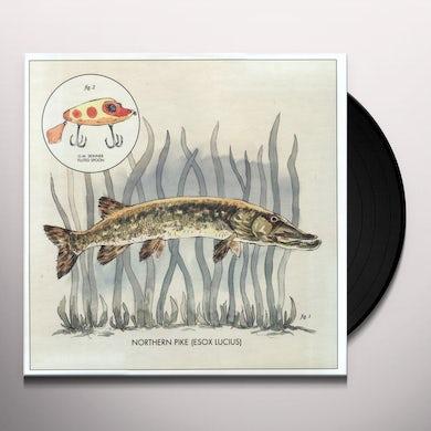 Nick Lowe Lay It On Me Vinyl Record