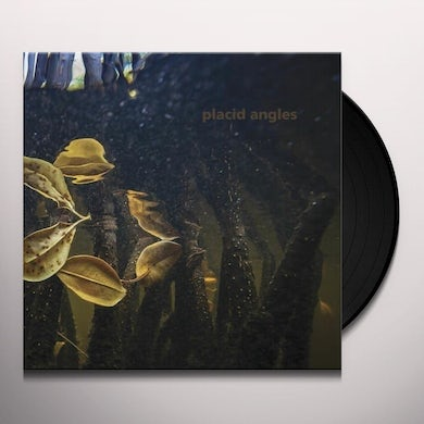 Placid Angles TOUCH THE EARTH Vinyl Record