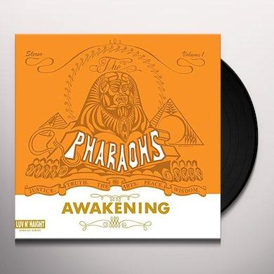 AWAKENING Vinyl Record