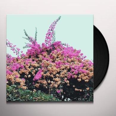 JAY SOM TURN INTO Vinyl Record