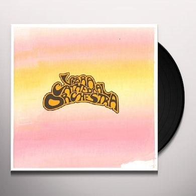 Vibracathedral Orchestra Vinyl Record