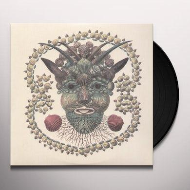 AKRON/FAMILY Vinyl Record