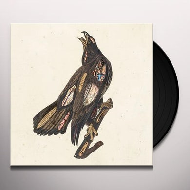 Book Of Bad Decisions Vinyl Record