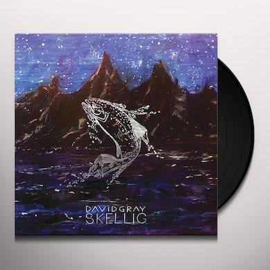 David Gray SKELLIG Vinyl Record