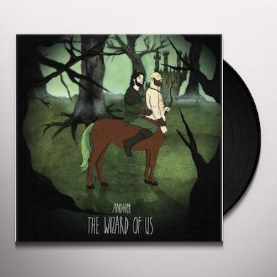 Andhim WIZARD OF US Vinyl Record