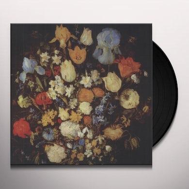 NAVIGATED LIKE THE SWAN Vinyl Record