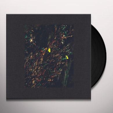 Dark Sky PASSENGER / WALKER (ROMAN FLUGEL REMIX) Vinyl Record