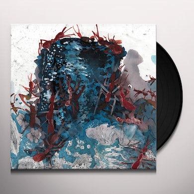 Elliot Schwartz & Big Blood ANT FARM Vinyl Record