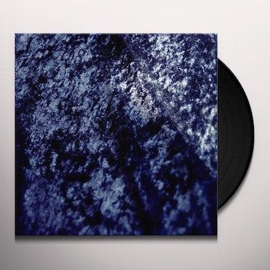 INSIDES Vinyl Record