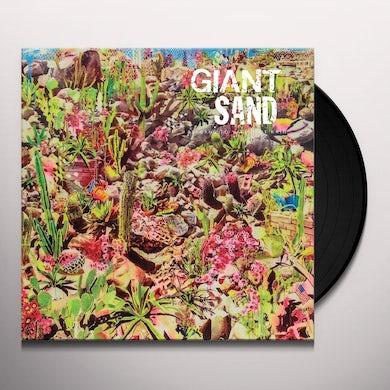 Returns To Valley Of Rain Vinyl Record