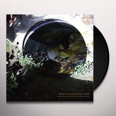 Radical Empathy Trio REALITY & OTHER IMAGINARY PLACES Vinyl Record