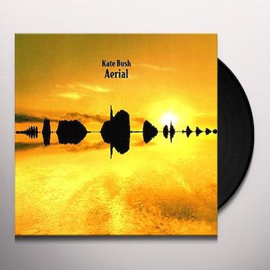 Kate Bush AERIAL Vinyl Record