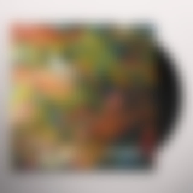 Polynation ALLOGAMY Vinyl Record