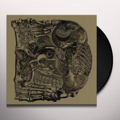 Dear Vinyl Record