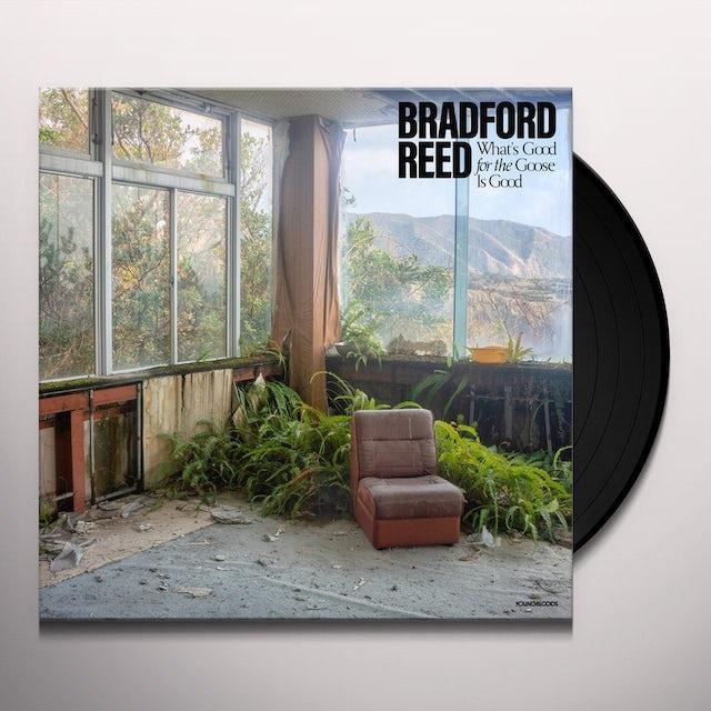 Bradford Reed