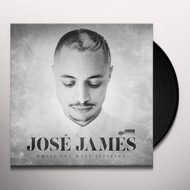José James WHILE YOU WERE SLEEPING Vinyl Record