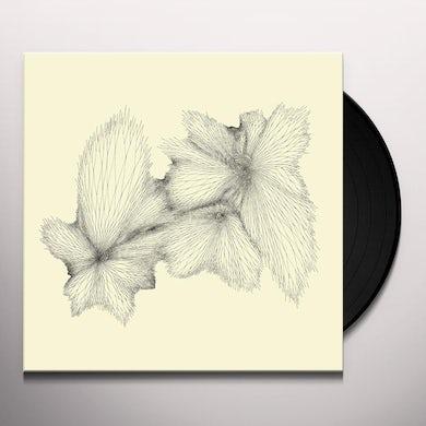 Eyvind Kang PLAINLIGHT Vinyl Record