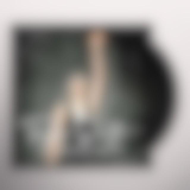 Taylor Swift SHOULD'VE SAID NO Vinyl Record