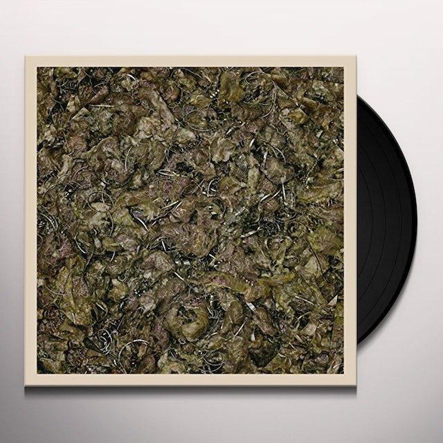 Piss Vortex FUTURE CANCER Vinyl Record