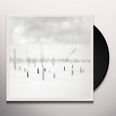 Taylor Deupree IN A PLACE OF SUCH GRACEFUL SHAPES Vinyl Record