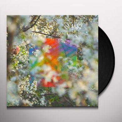 Four Tet  TEENAGE BIRDSONG Vinyl Record