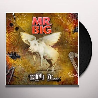 Mr Big WHAT IF Vinyl Record