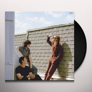 FALL INTO THE SUN Vinyl Record