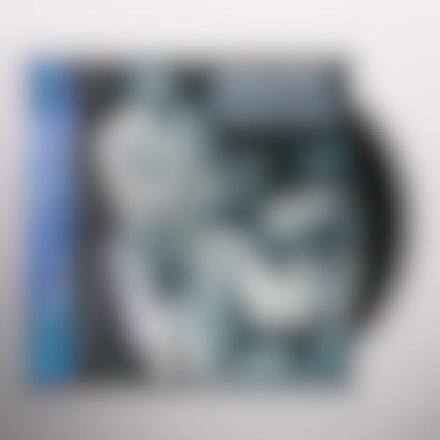 Chuck Berry ROCKIN Vinyl Record