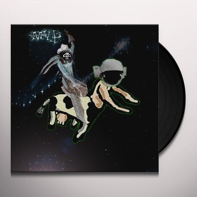 Matt Valentine PRESERVES Vinyl Record