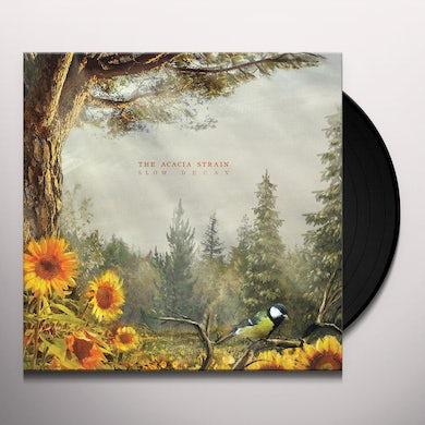 Slow Decay Vinyl Record