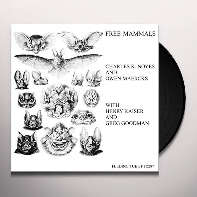 Charles K Noyes / Owen Maercks / Henry Kaiser FREE MAMMALS Vinyl Record