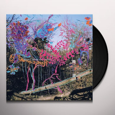 Animal Collective HERE COMES THE INDIAN Vinyl Record