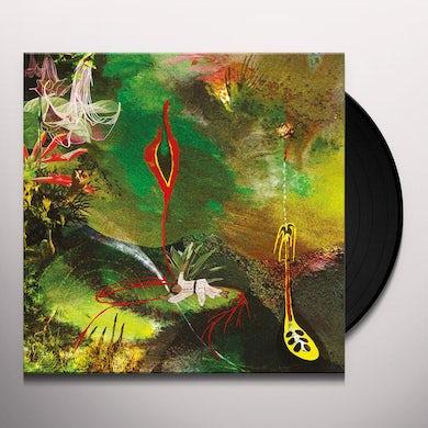 Tomas Tello CIMORA Vinyl Record