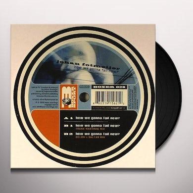 Johan Fotmeijer HOW WE GONNA FAIL NOW Vinyl Record