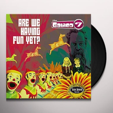 ARE WE HAVING FUN YET? Vinyl Record