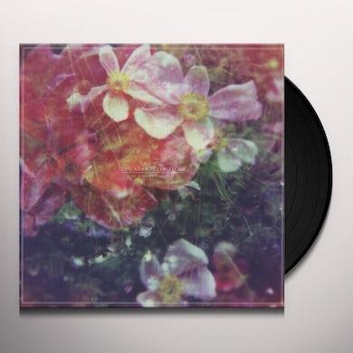 Stargazer Lillies WE ARE THE DREAMERS Vinyl Record