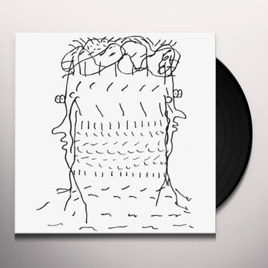 Roaming BELIEVE IN REFLECTING Vinyl Record