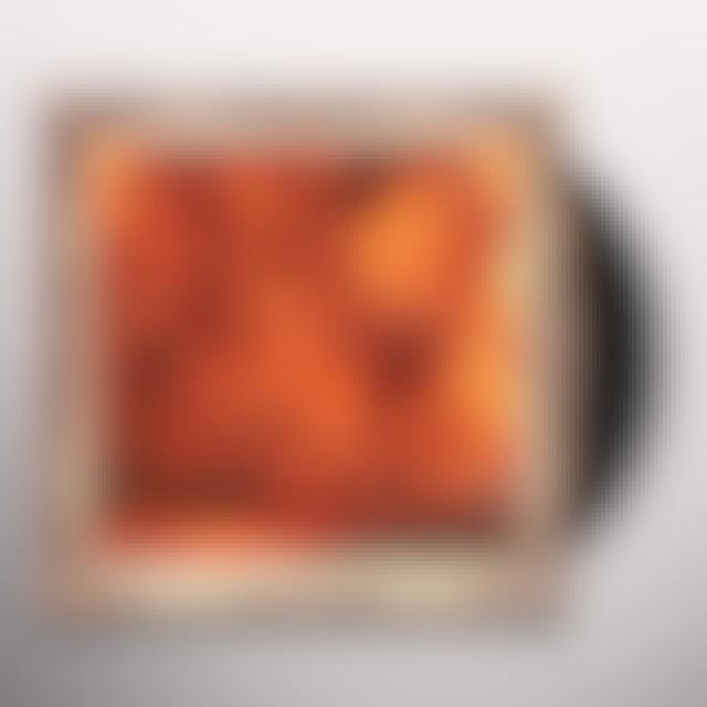 Kid Cudi INDICUD Vinyl Record