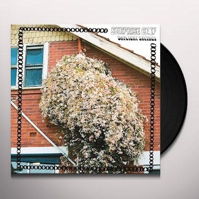 DAYLIGHT SAVINGS Vinyl Record