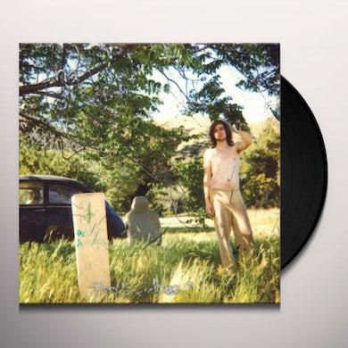 Ariel Pink's Haunted Graffiti DOLDRUMS Vinyl Record
